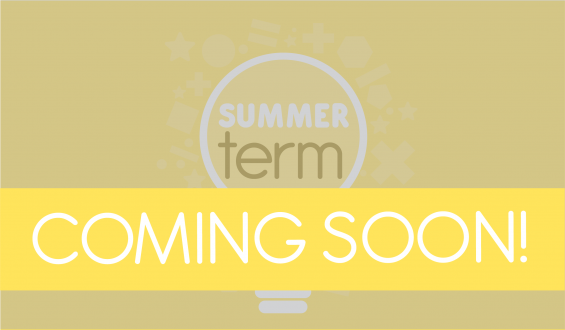 Think Maths Summer term Key Stage 1