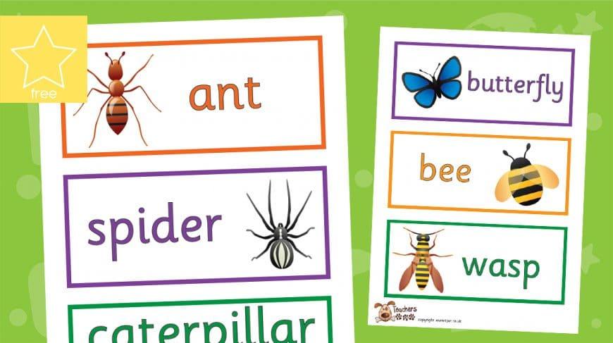 minibeast cartoon labels