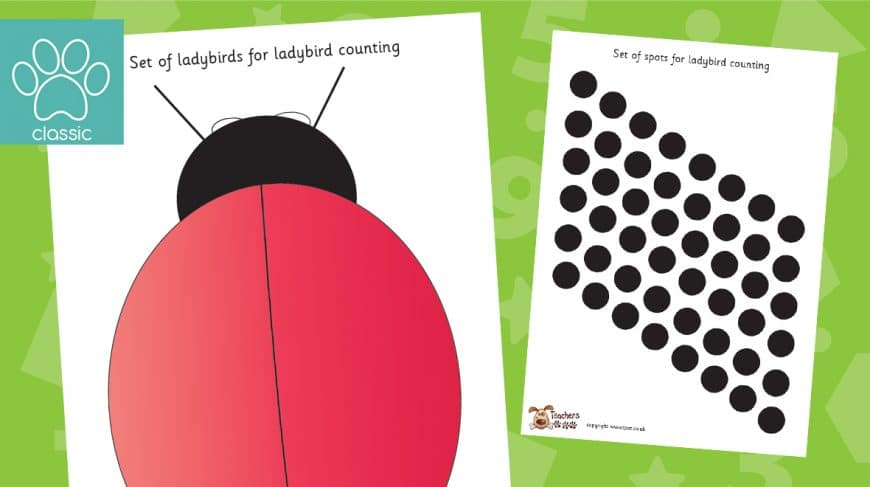 ladybird counting activity