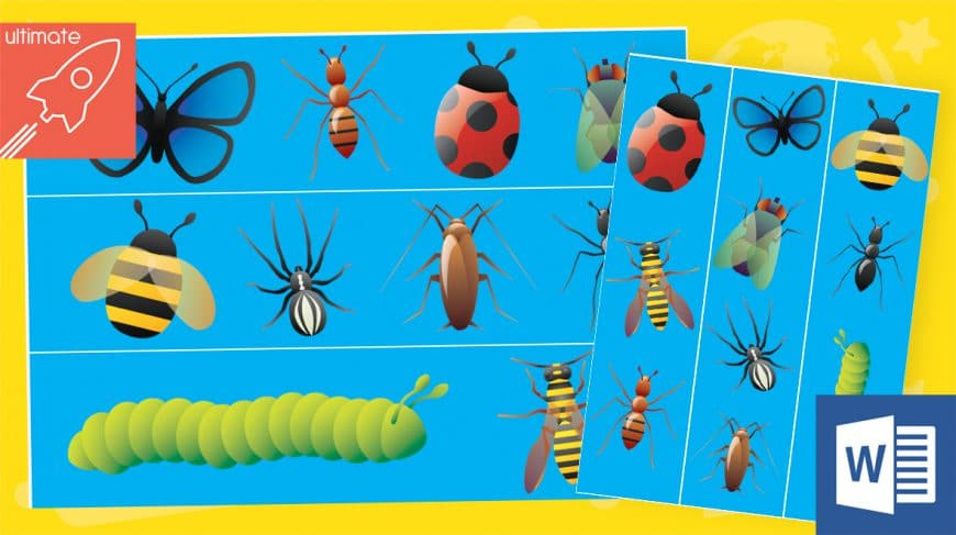 editable classroom display minibeasts borders