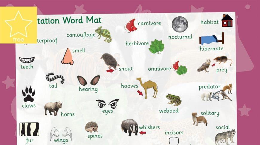 adaptation word mat