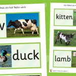 Farm Animals and their Babies Labels