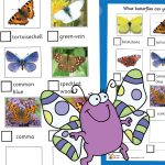 Butterfly Investigation Spotter Sheet