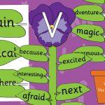 Viola Vocabulary VCOP Display